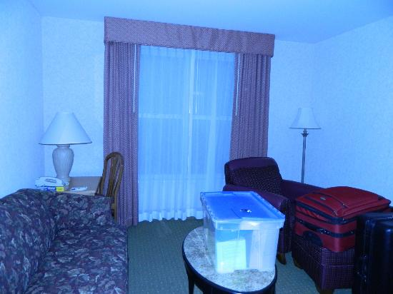 Homewood Suites by Hilton Harrisburg-West Hershey Area: I apologize for my poor color quality. I'm not sure why the living room came out so blue.