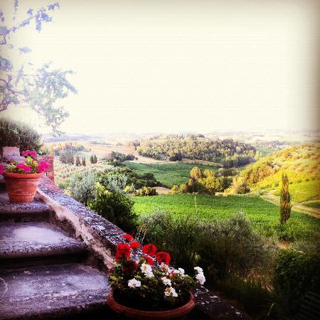 Villa il Pozzo: View from Bella Vista