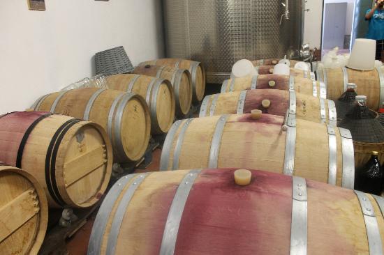 Villa il Pozzo: Wine!