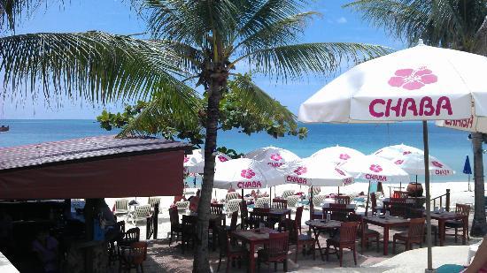 Chaba Samui Resort: Blick aufs Meer und Strand vom Pool aus