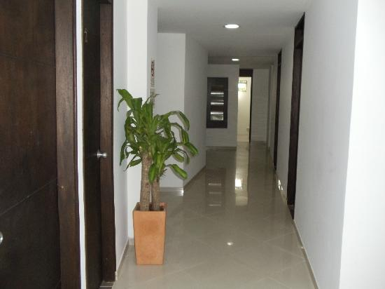 Black Sheep Hostel Medellin: Hallway