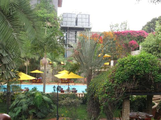 Fairview Hotel: Backyard (pool and greenery)