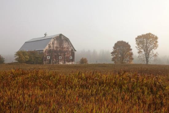 Au Train Lake B&B & Cottage: Upper Peninsula Foggy Morning