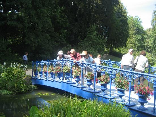 Muskauer Park: Something interesting below this bridge
