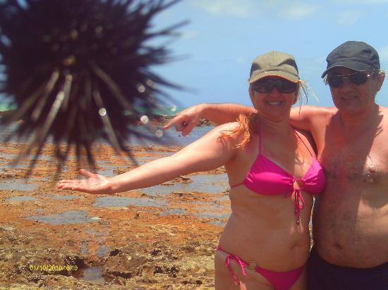 Gunga Beach: esto es un truco fotografico con un erizo en los corales del lago de playa de gunga.......