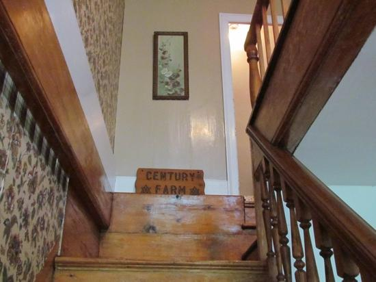 Clayton Farm Bed & Breakfast: stairway