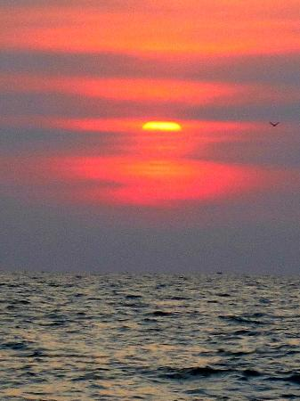 Martin's Comfort: sunset beach
