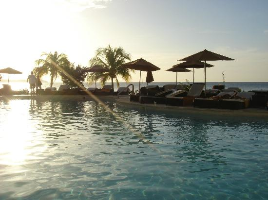 Secrets Wild Orchid Montego Bay: Main pool looking out towards the ocean