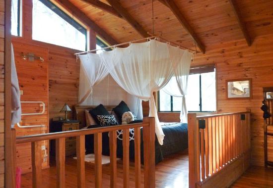 Ravensbourne Forest Chalets: bed