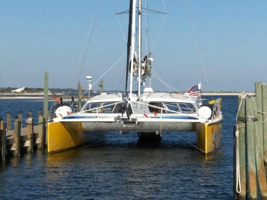 Sail Wild Hearts Catamaran