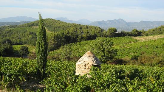 Les Amis de Jacqueline : Trail to Crestet
