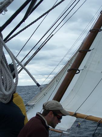 Schooner Lazy Jack: Racing on the wind!