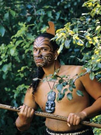 Cleveland Thermal Motel: Let us introduce you to Maori culture & tradition;  special prices arranged.