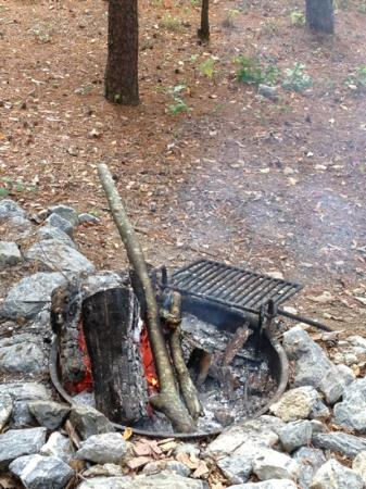 Ranger, GA: Enjoying the fire on a cold Salacoa Creek Park morning.