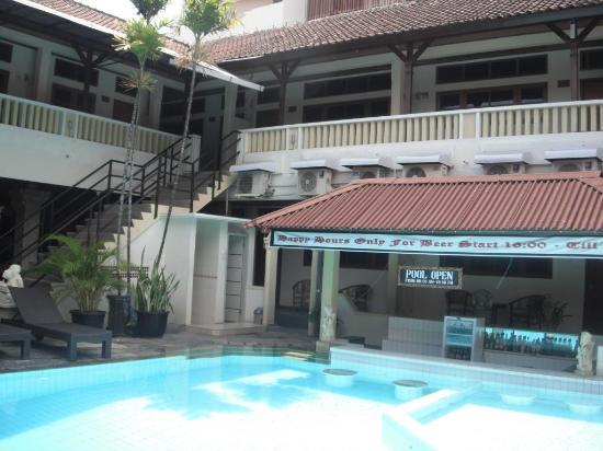 Rosani Hotel: プールバー