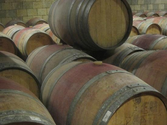 Tuscan Wine Tours by Grape Tours: Fattoria Corzano e Paterno