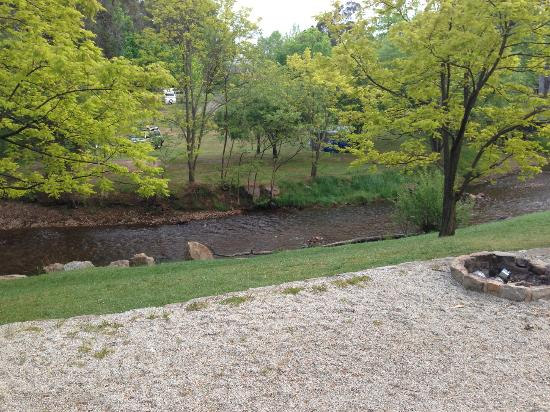 Bright Holiday Park: Creek view from cabin