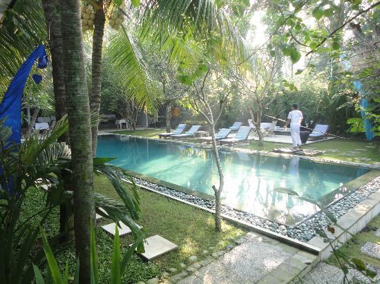 Aquaria: The pool