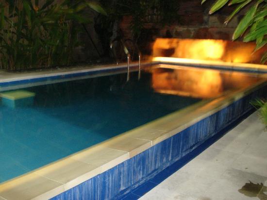 Aahh Bali Bed & Breakfast : Swimming pool