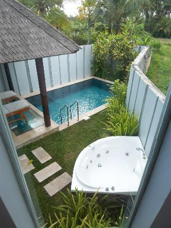 Furama Villas & Spa Ubud: deluxe pool house