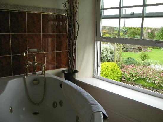 Mill Close Farm: View from bathroom