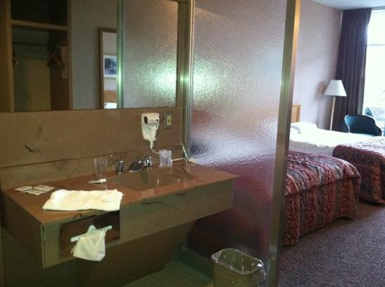 Luray Caverns Motel East: bathroom sink separate from shower