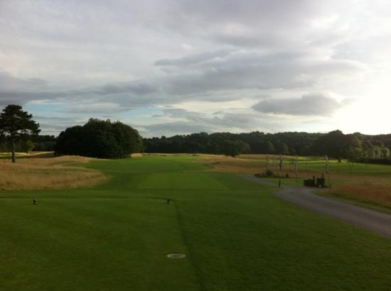 Rockliffe Hall: the course