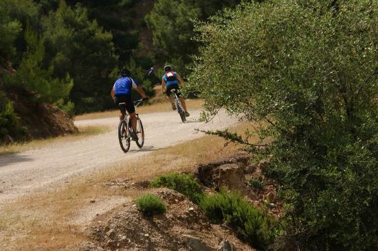 Skiathos Mountain Bikes Excursion 1