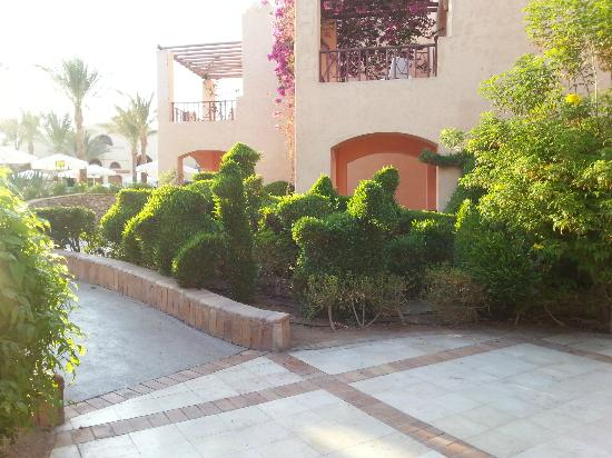 Iberotel Makadi Beach: Cut hedges