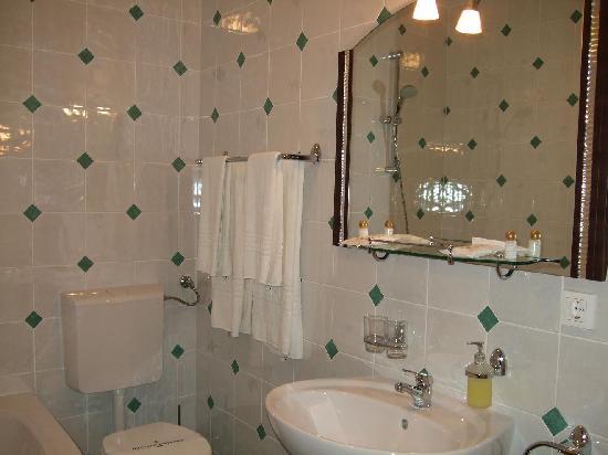 Pensiunea Maria : Bathroom