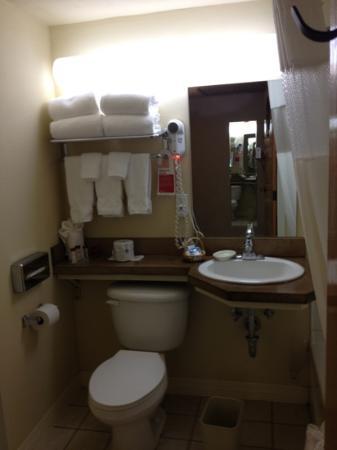 Ramada Anchorage: bath