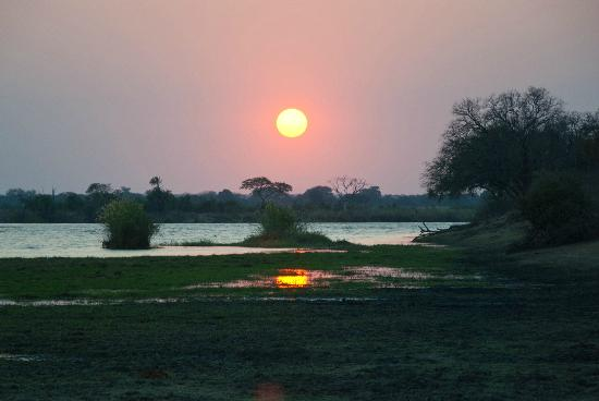 Imbabala Zambezi Safari Lodge : The Morning Game Drive