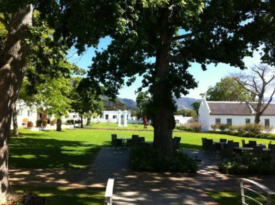 Steenberg Hotel: Grounds and view from room