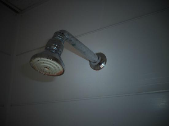 Denville Hotel Blackpool: shower head