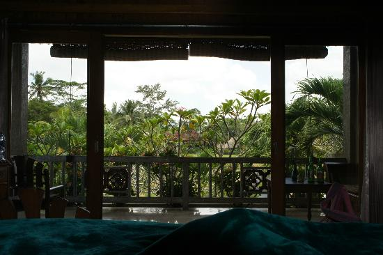 Cendana Resort and Spa: View from the bed