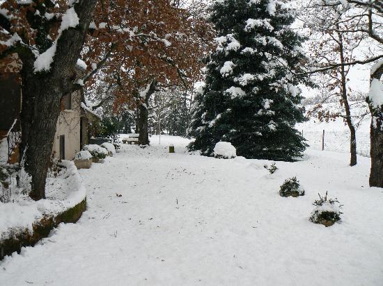 Les Chenes : Jardin d'agrément en hiver