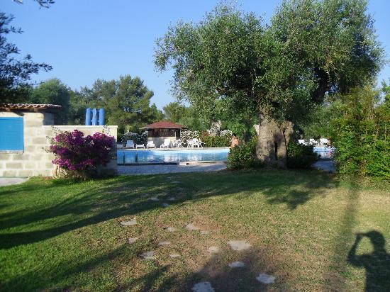 Scalilla - L'Agriturismo : il parco attorno alla piscina