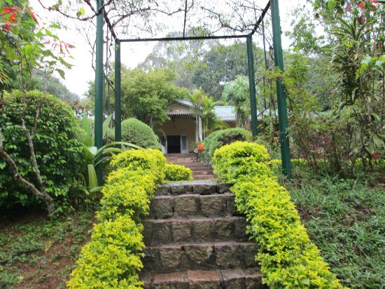 Hotel Cranford Villa : The garden leading up to the main entrance.