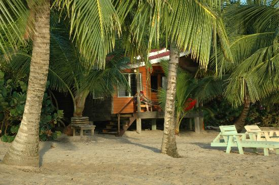 Jungle Jeanie's by the Sea : Our Cabana