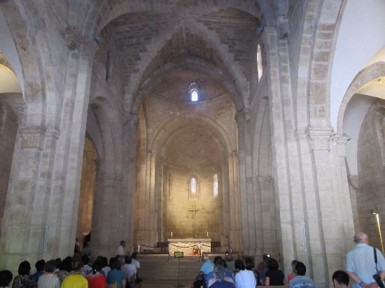 Church of Saint Anne : l'interno della Chiesa