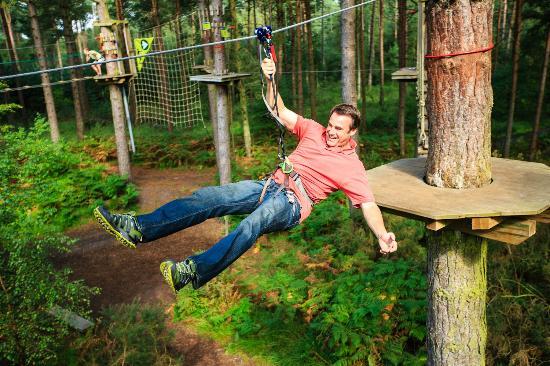 Go Ape Haldon Forest Park