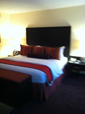 Washington Plaza Hotel: Suite