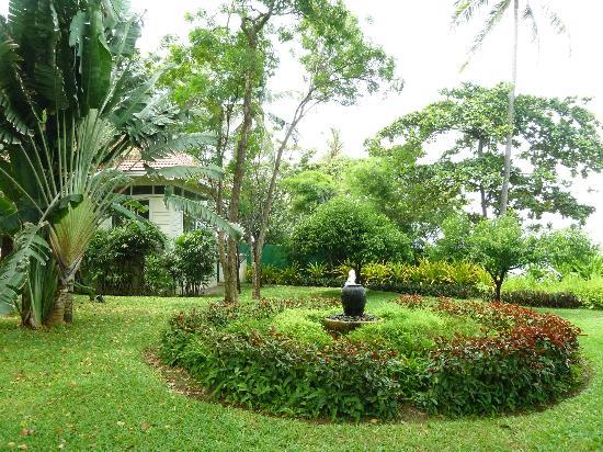 Centara Grand Beach Resort & Villas Hua Hin: garden