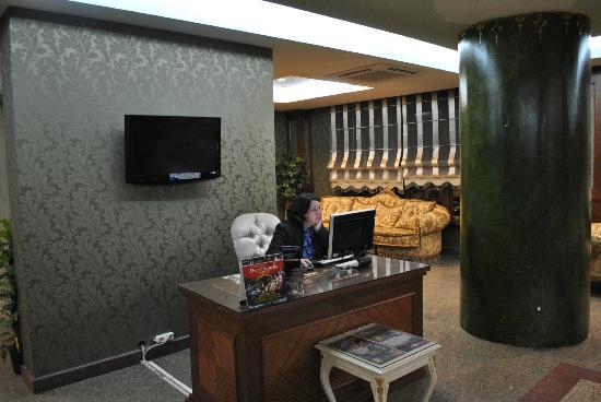 Hotel Sapphire: sala computer