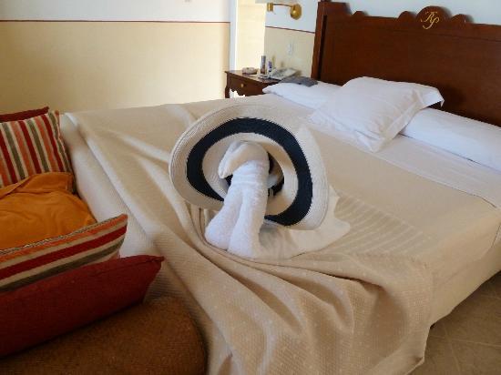 Paradisus Rio de Oro Resort & Spa: A Swan