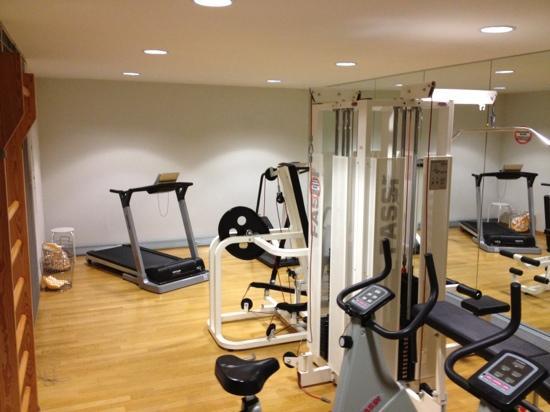 Hotel Baslertor gym