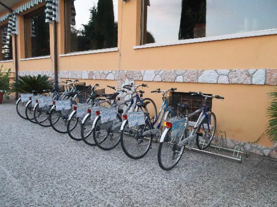 Hotel Garden: Free to use bikes