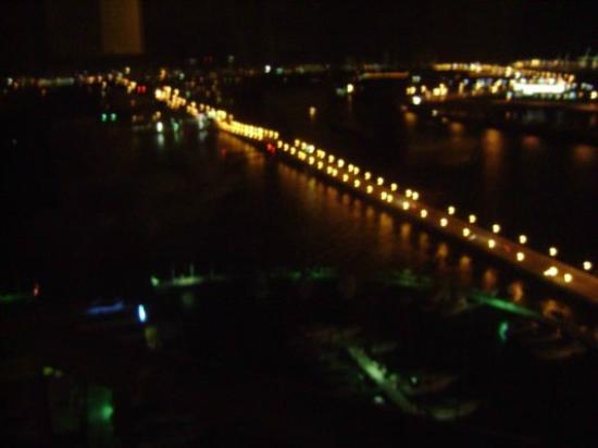 Miami Marriott Biscayne Bay: Vista do nosso quarto. Marina e ponte.