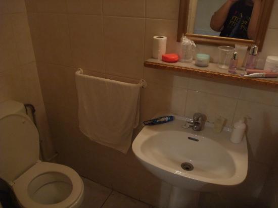 Hipotel Paris Bordeaux : sink and toilet