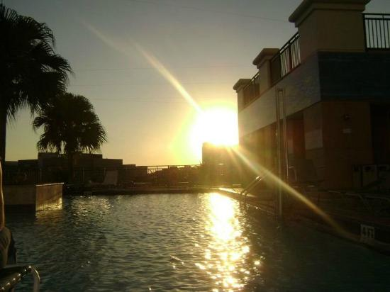 Tampa Marriott Waterside Hotel & Marina: Sunset